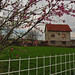Serbian Countryside