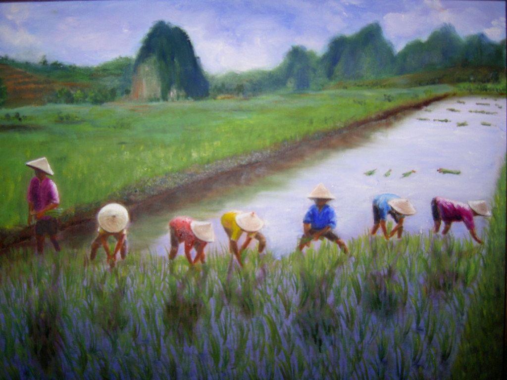 Rice Painting Pictures