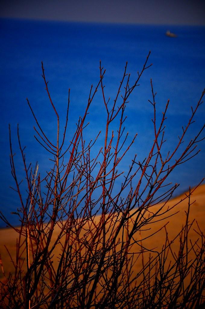 Contrast Indiana Sand Dunes Vashista De Silva Flickr