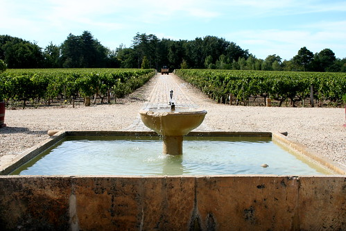 Bordeaux: Chateau Smith Haut Lafitte - Day One | by Megan Lawrie Cole