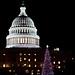 Congressional Christmas Tree