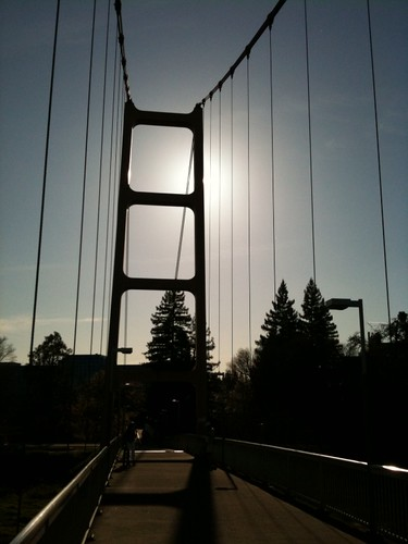 how to pay golden gate bridge toll fee