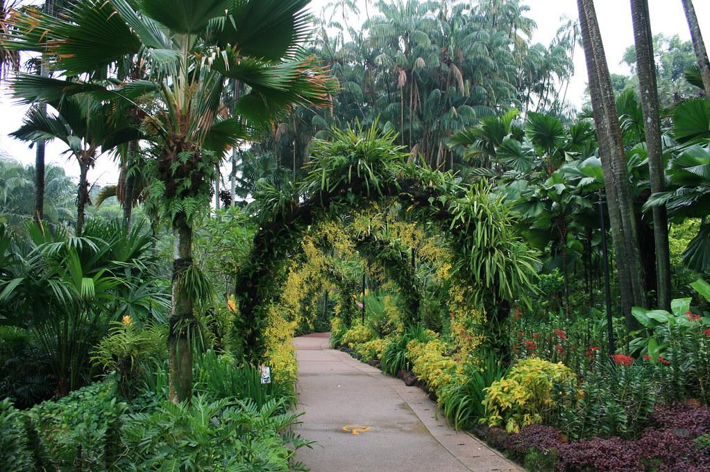 Singapore Botanical Gardens The Singapore Botanic Gardens Flickr
