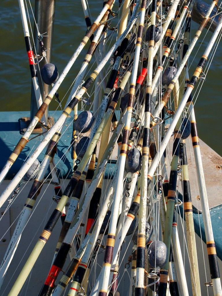 Fishing poles husband and son went deep sea fishing st for Deep sea fishing st augustine