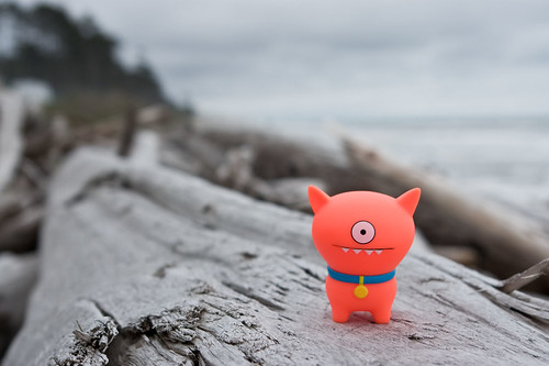 Uglyworld #565 - Ralf at Quinault Indian Reserve Beach | by www.bazpics.com