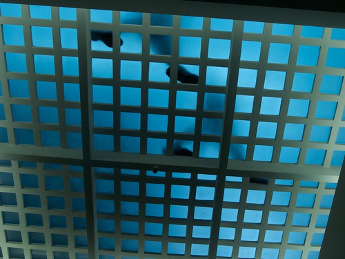 GLASS FLOOR, WHO LOOKS UP? | by marc falardeau