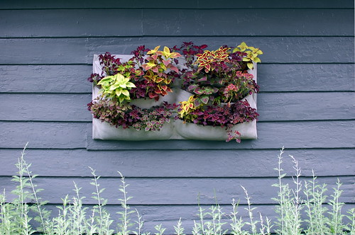 felt wall planter | by Martha W McQuade