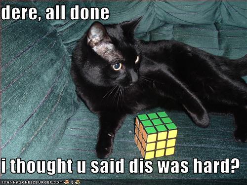 Black Cat Captions