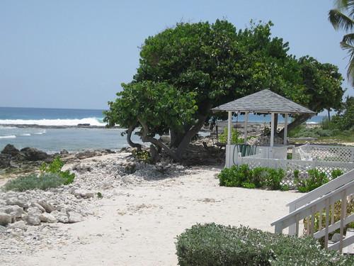 Little Cayman Island Webcam