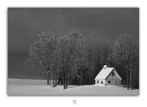 "Sugar Shack "" Rétrospective "" 