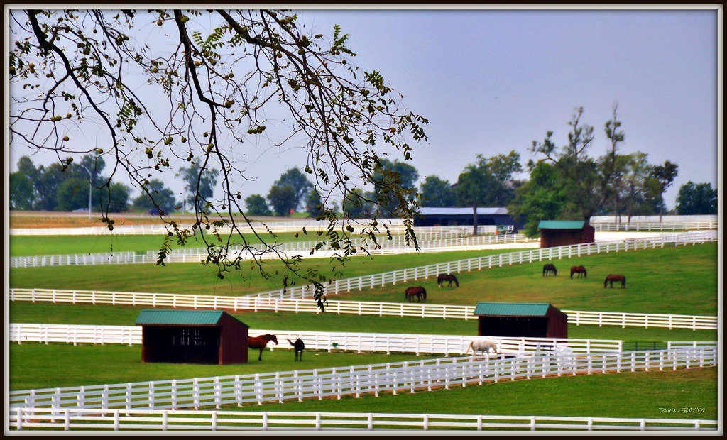 The Kentucky Horse Park Will No Longer Have White Fences