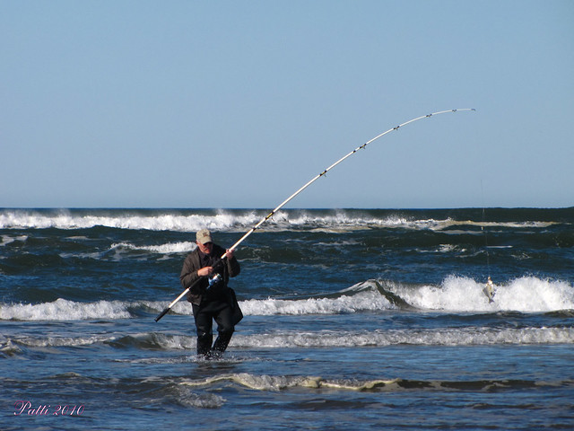 Surf perch fishing flickr photo sharing for Surf perch fishing oregon