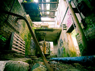 urban decay | by piglicker