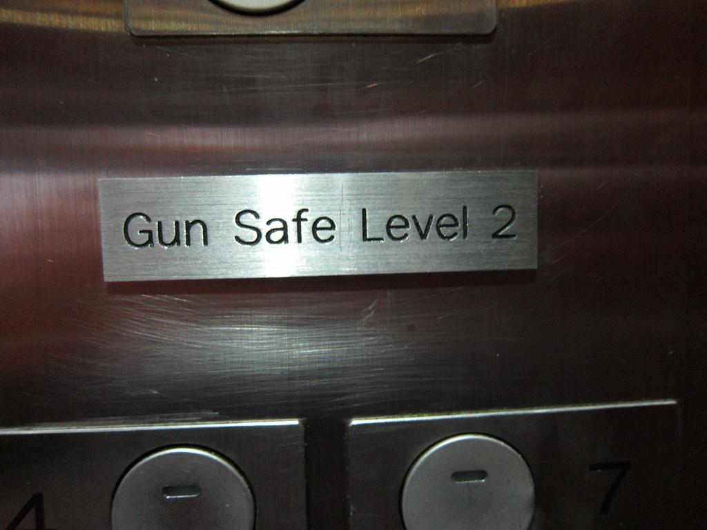 Image result for gun safe