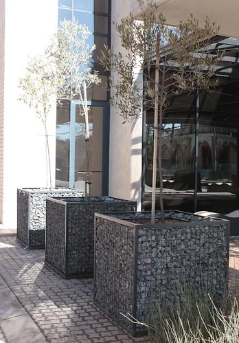 gabion planters badec bros group flickr. Black Bedroom Furniture Sets. Home Design Ideas