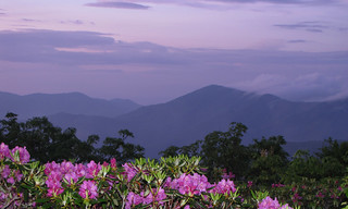 Evening at Craggy Gardens | by BlueRidgeKitties