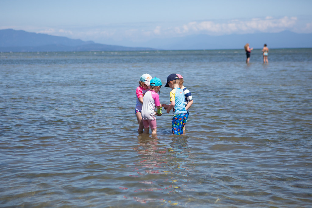 Kids exploring the beach at parksville