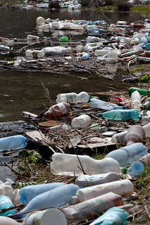 Plastic bottles and garbage on the bank of a river | by Horia Varlan