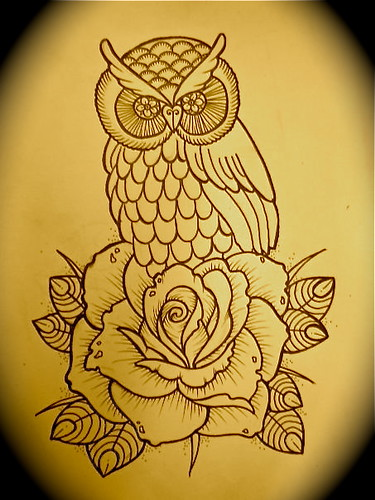 Owl And Rose Sketch 2010 Kim Anh