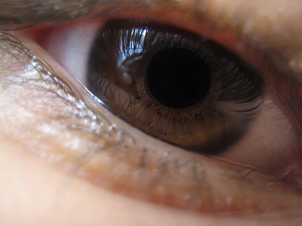 Ojos Oscuros Ojos Cafes 3 Freakme Flickr