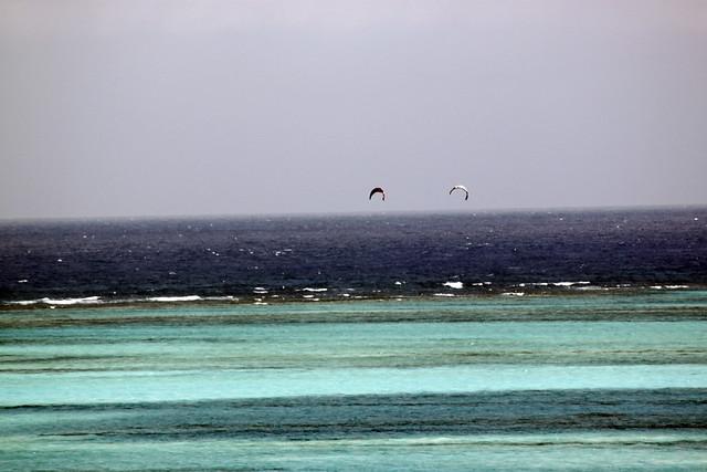 divirtiendose en el mar de 7 colores