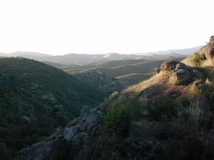 Los Padres National Forest | by totalescape.com