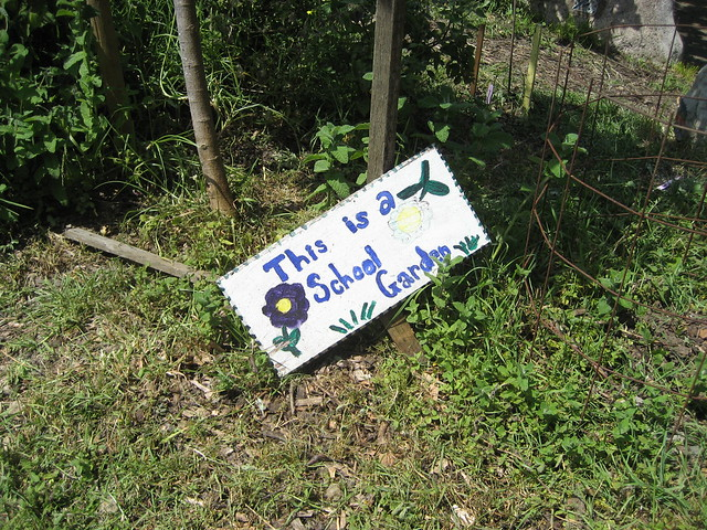 Edible School Yard Compost Cake