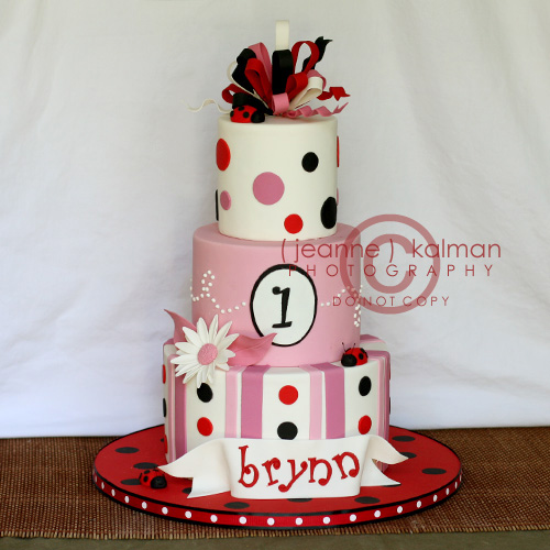 Birthday Cake Photos For 1st Birthday : Ladybug 1st birthday... This is a little cake... I just ...