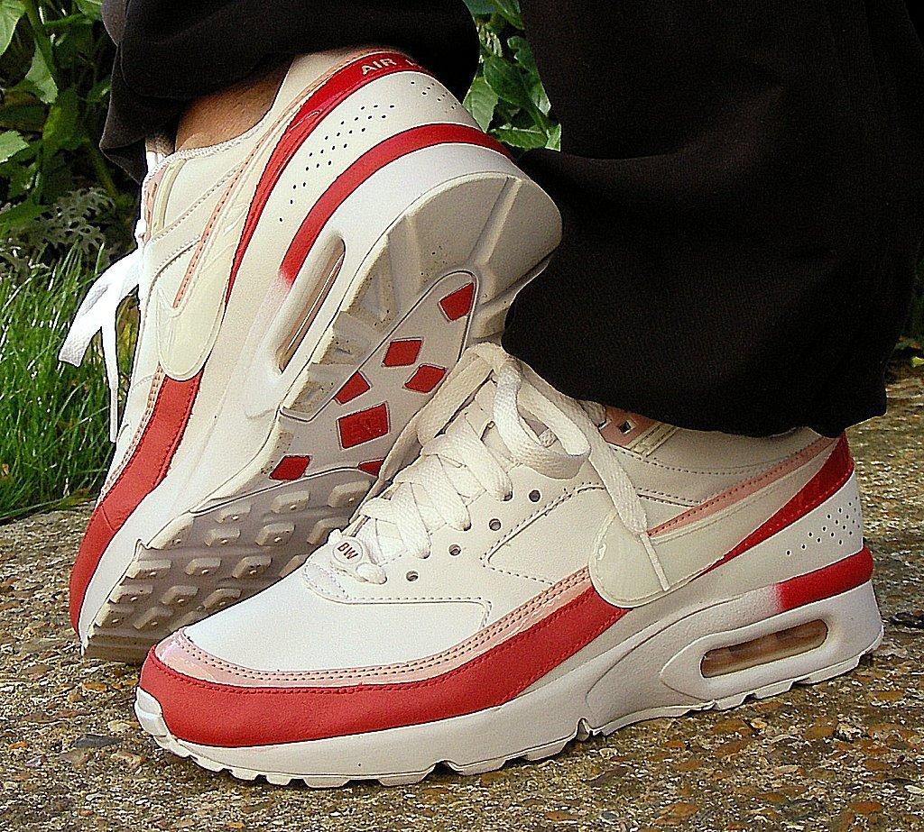 Nike Air Max Leopard Print Shoes