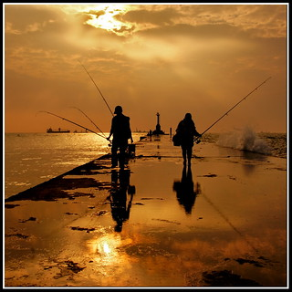 Fisherman 51~ Day after day... | by AA Dagital Photography