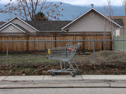 Shopping Cart with Paper Cup | by Drew Makepeace