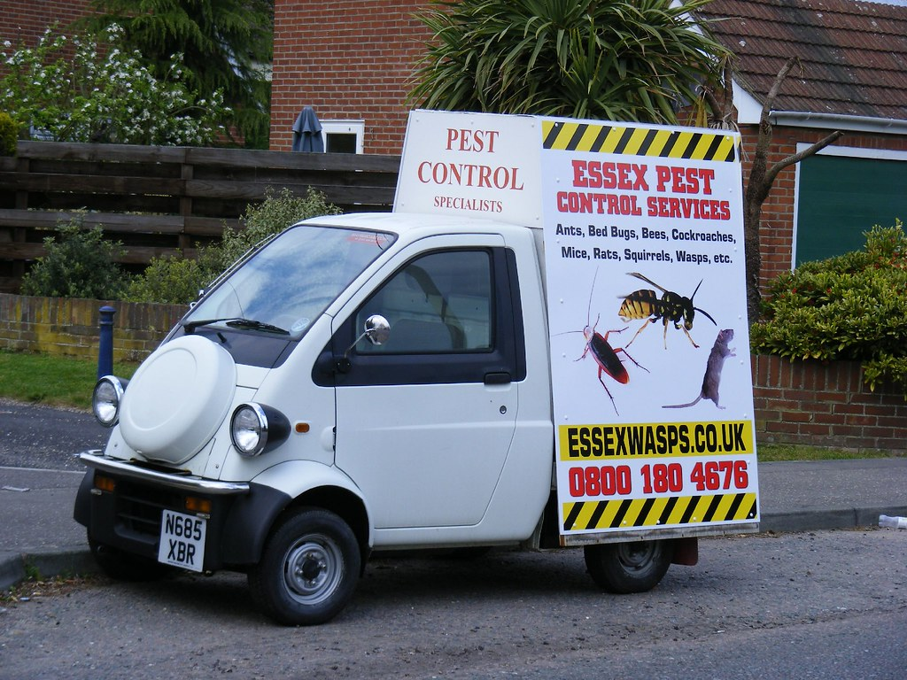 Image result for pest control flickr