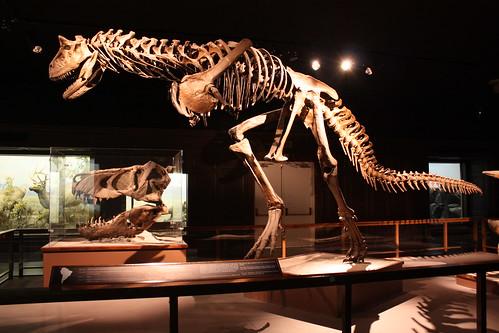Jobs At Natural History Museum Los Angeles