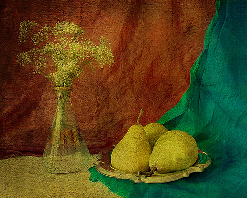 3 pears in june | by sandra djurbuzovic