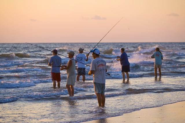 Fishing at cape point on hatteras island surf or sound for Hatteras fishing reports
