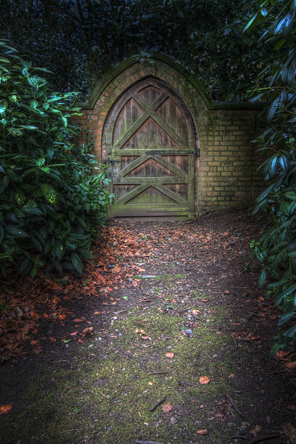 Doorway to the enchanted forest... | ..that's what my daught ...