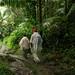 Hiking in El Yunque