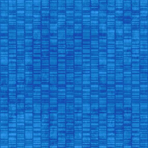 Shop Репликация Генома 2004