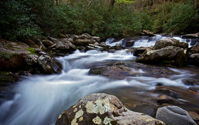 Fast Flowing Stream | Clear, fast-flowing waters of this ...