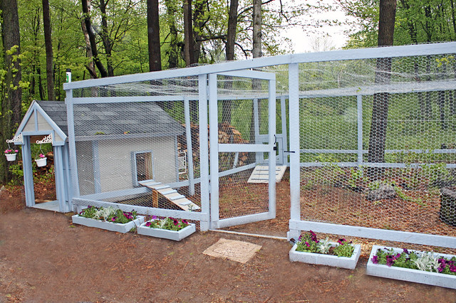 Chicken coop run elana flickr for Chicken enclosure ideas