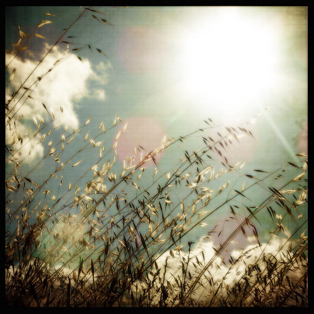 Earth has no sorrow that heaven cannot heal. ~ Thomas Moor ...