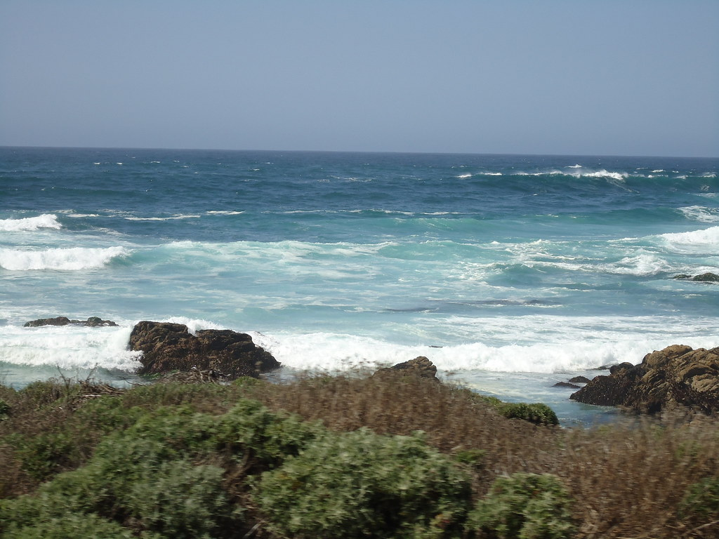 Pebble Beach Food And Wine Reviews