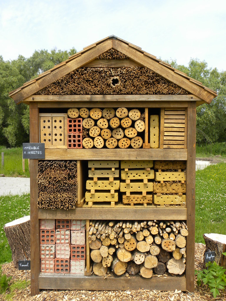 bee and insect house maison du parc les marais charles cuthbert flickr. Black Bedroom Furniture Sets. Home Design Ideas