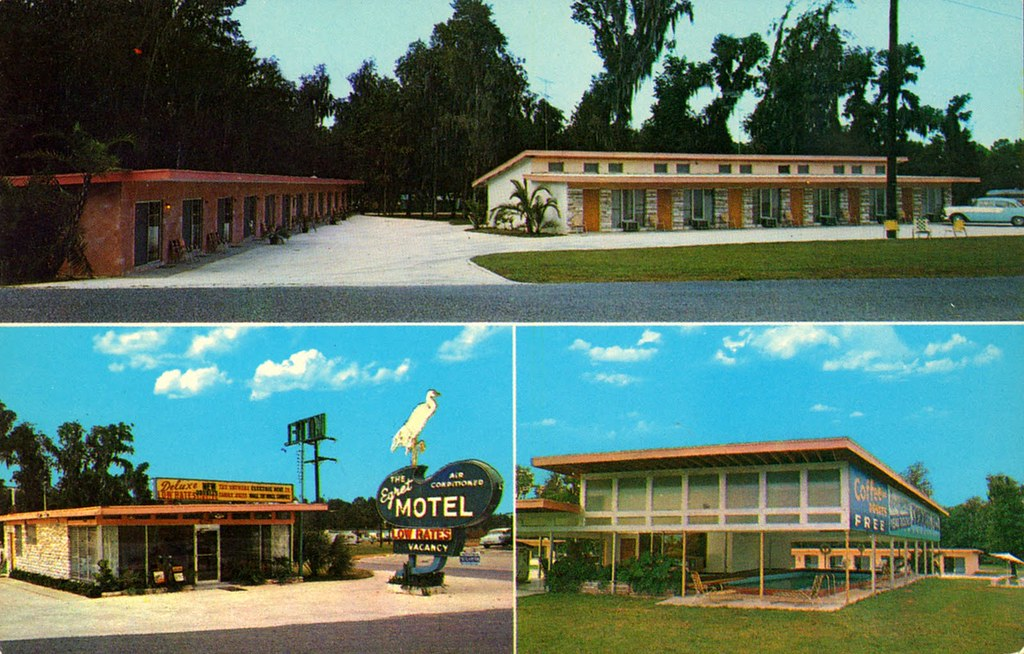 The New Egret Motel - Ocala, Florida