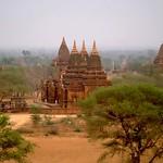 DSC564/Burma/Bagan East/Paya Tone Zu
