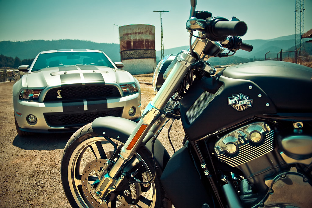 Ford Mustang Shelby Gt500 Vs Harley Davidson V Rod Muscle