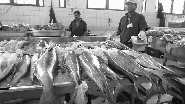 Abu Dhabi Fish Market Abu Dhabi Fish Market Great Fish