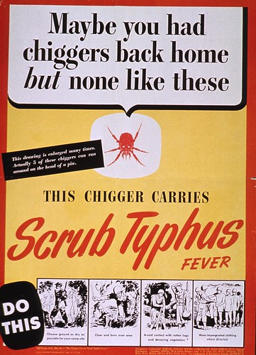 maybe you had chiggers back home but none like these  this