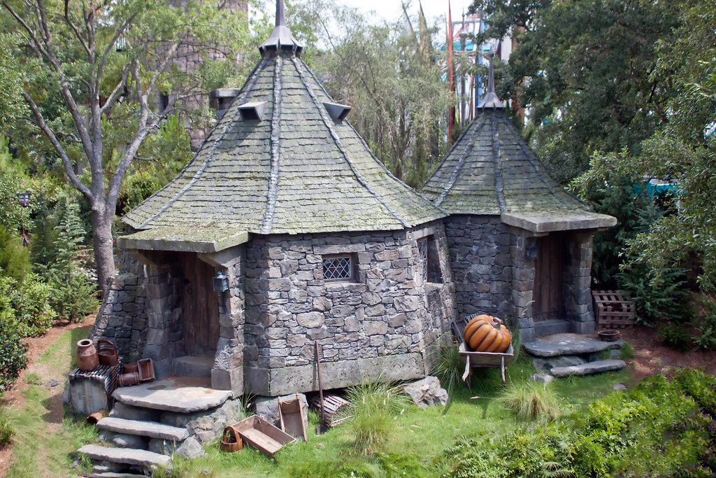Hagrid 39 s hut taken from the flight of the hippogriff What house was hagrid in