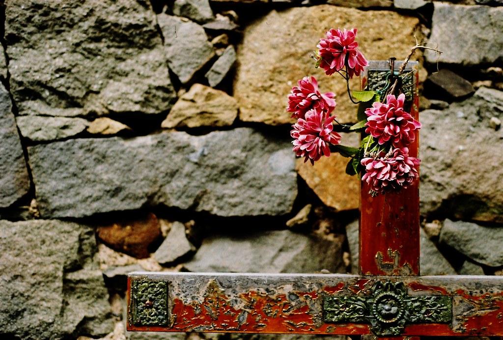 Riomaggiore church cross grave flowers